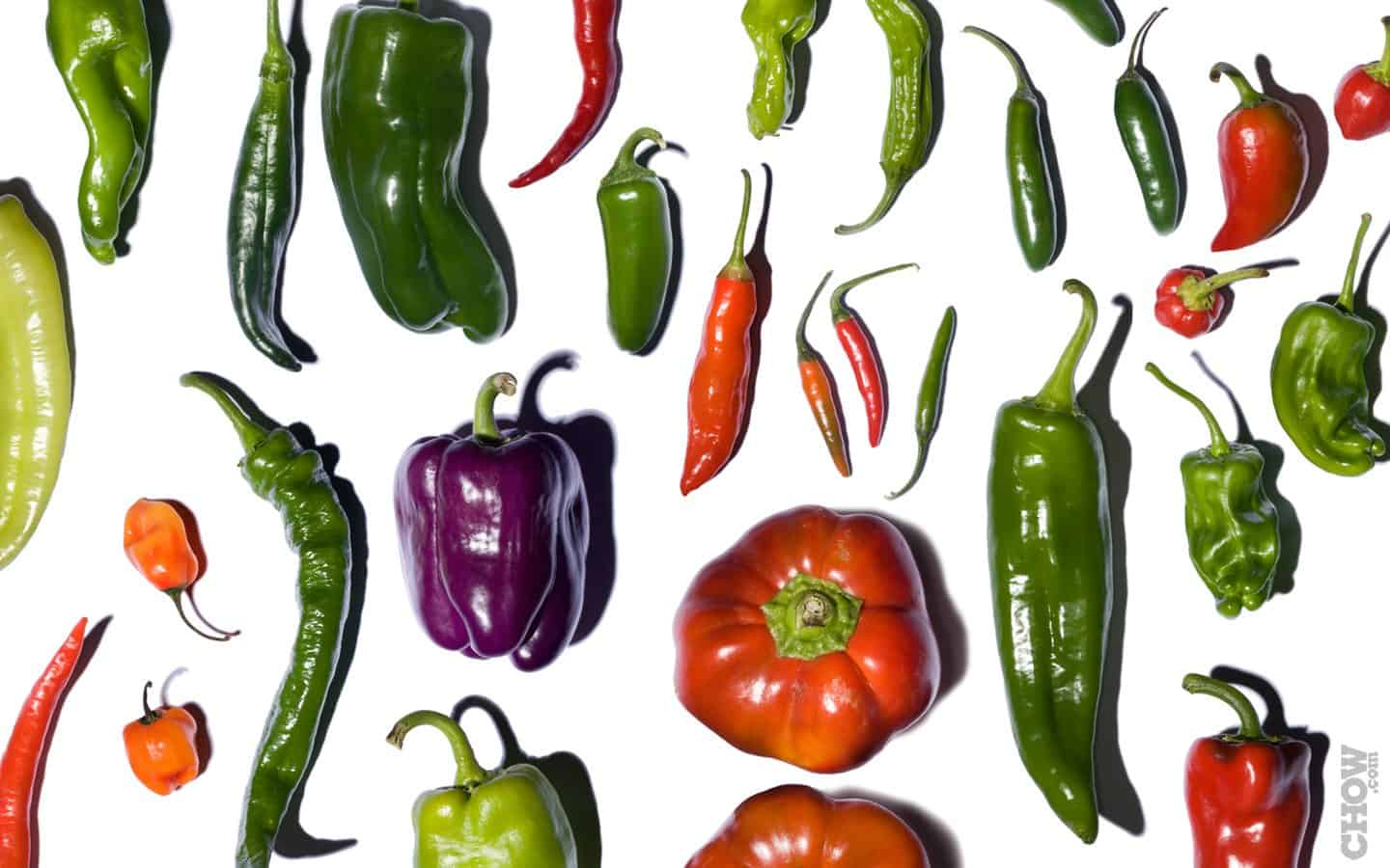 Using Peppers to Burn More Fat 1 - Florida Independent