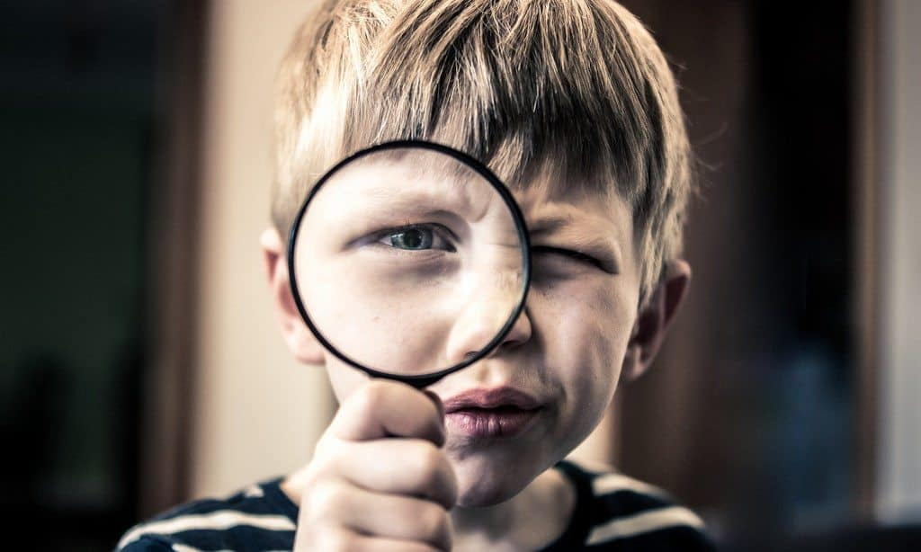 Encourage Curiosity With These 13 Excellent Magnifying Glass Options 1 - Florida Independent