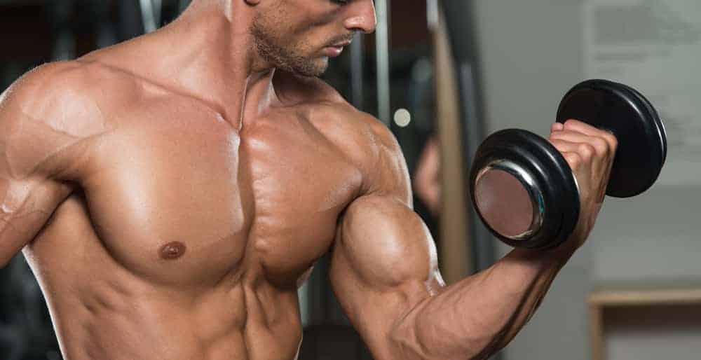 3 Exercises for Bigger Biceps