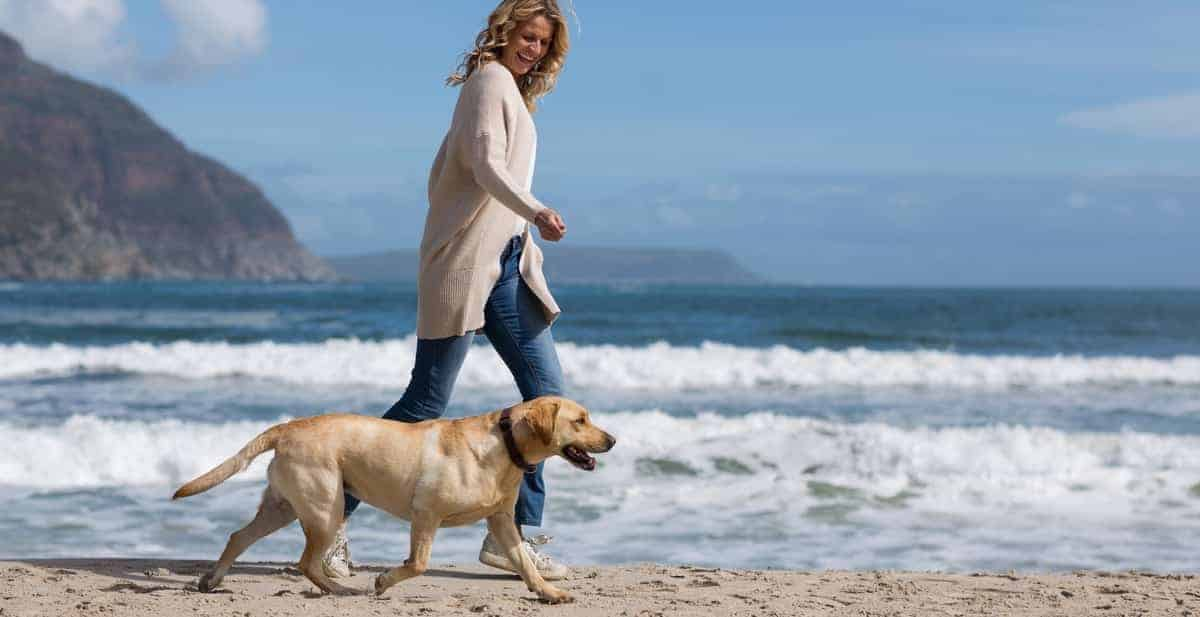 Why Running with Your Dog Is a Great Way to Exercise