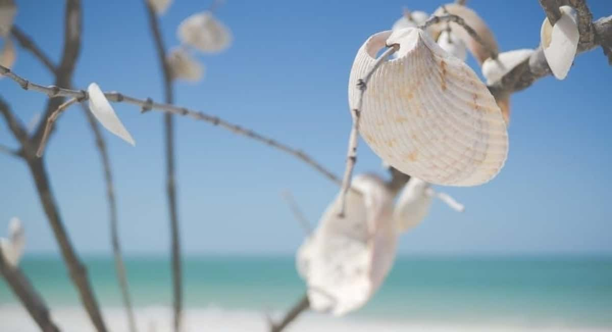 3 Effective Ways to Rebuild Tourism in South Florida