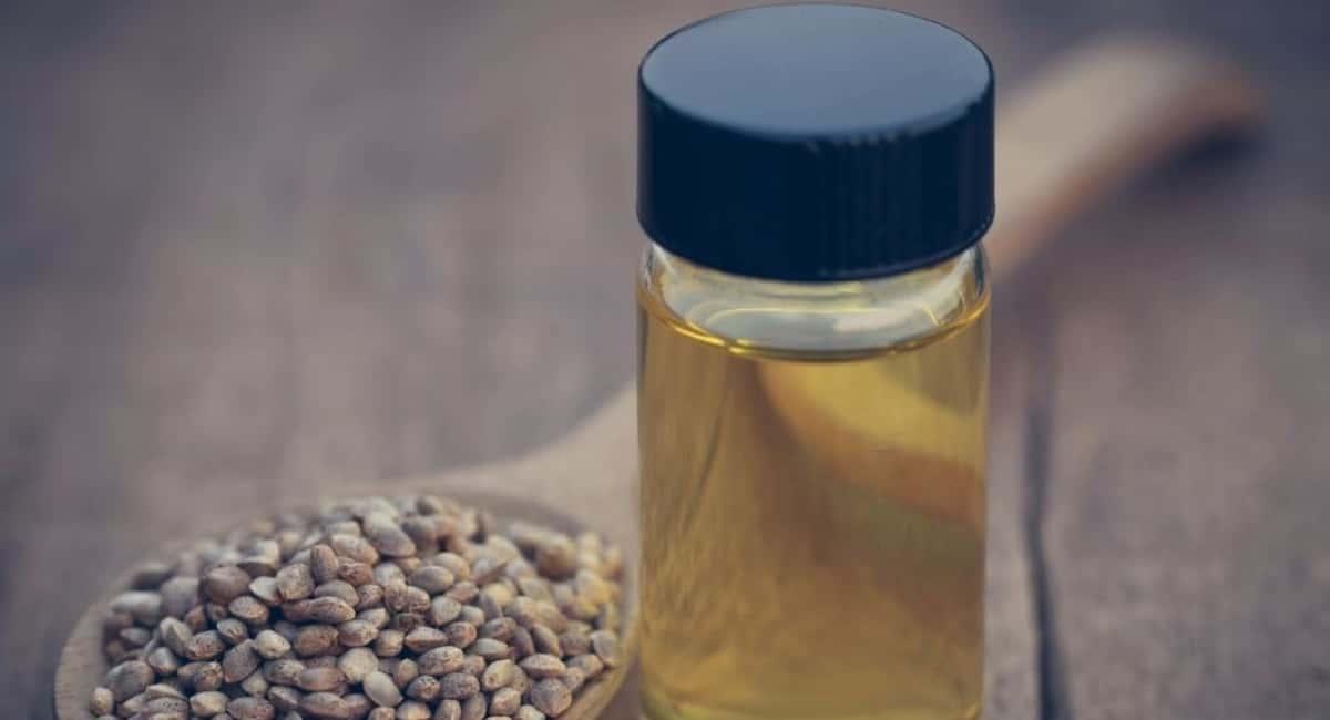 CBD Oil In Pain Treatment