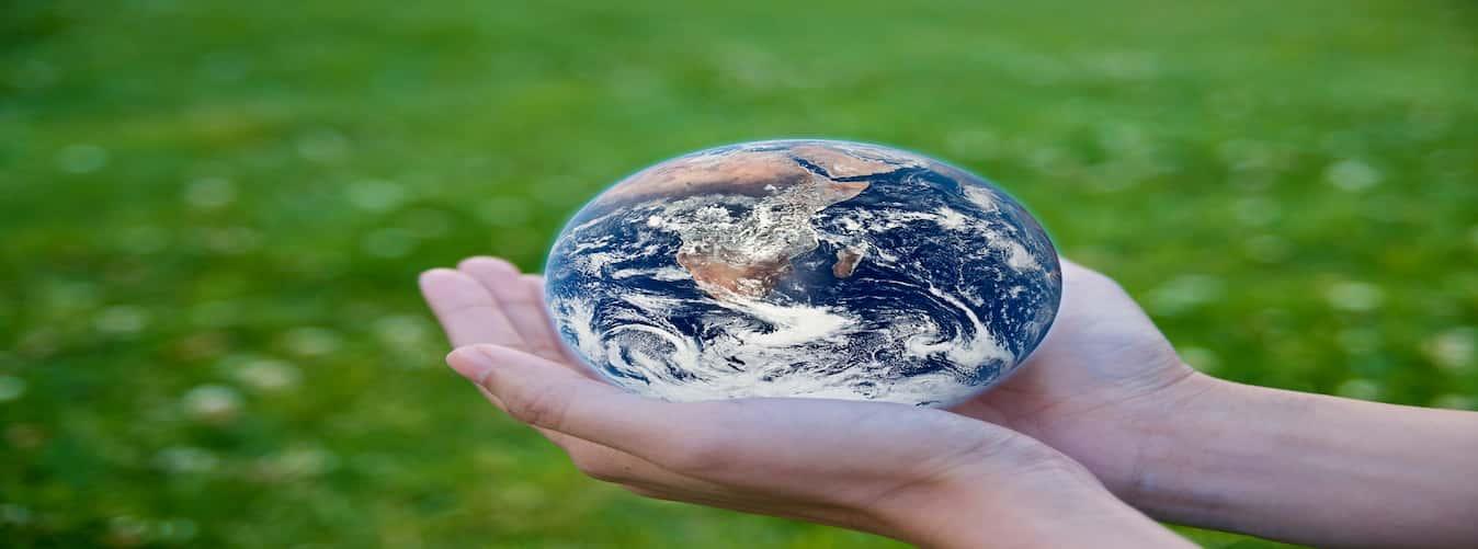 climate change organization