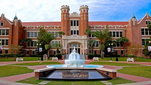 Law Schools in Florida