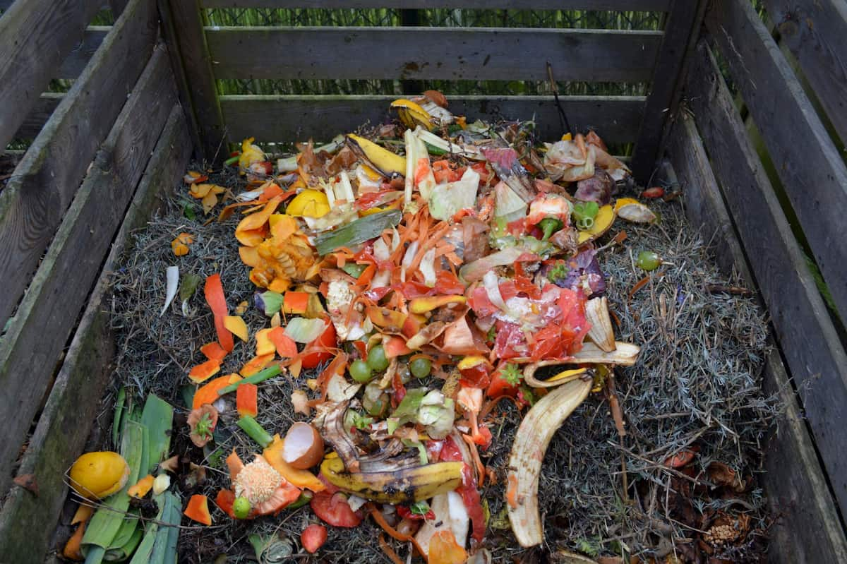composting in the city