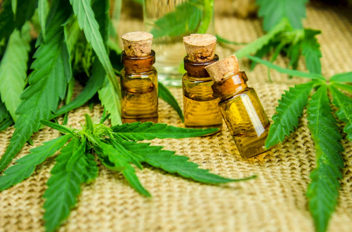 how long does it take cbd to work