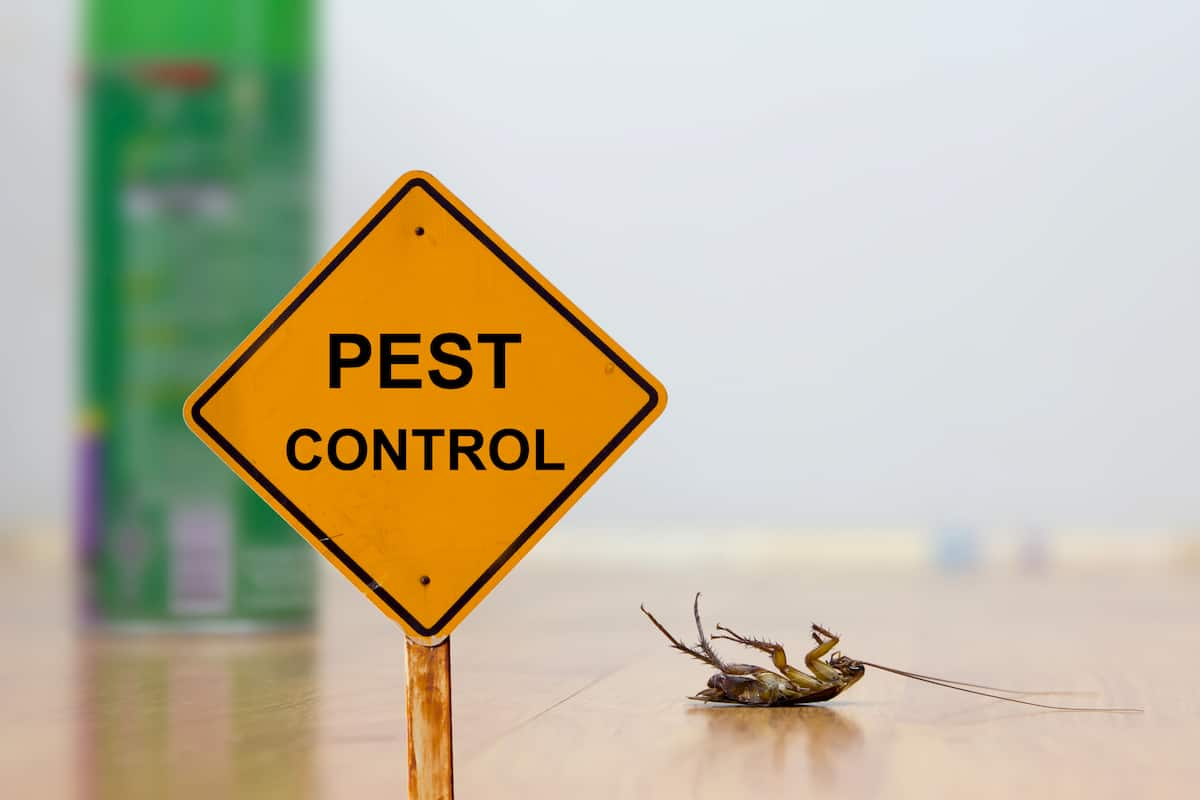 what does pest control do