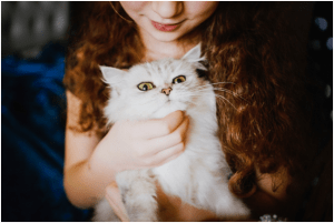 How Having Pets Can Help You Become Healthier