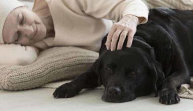 Best Dog Breeds for Anxiety and Depression