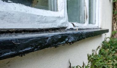 Signs That You Should Replace Your Windows Before the End of the Year