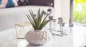 5 Home Decor Trends to Try Out in 2019