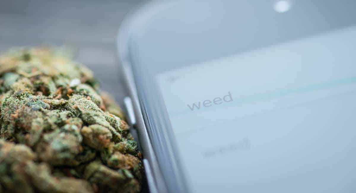 The Absolute Beginner's Guide to Buying Weed