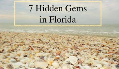 Love Exotic Travel Here are 7 Hidden Gems in Florida