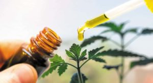 Back Pain Can Be Cured Using CBD Oil
