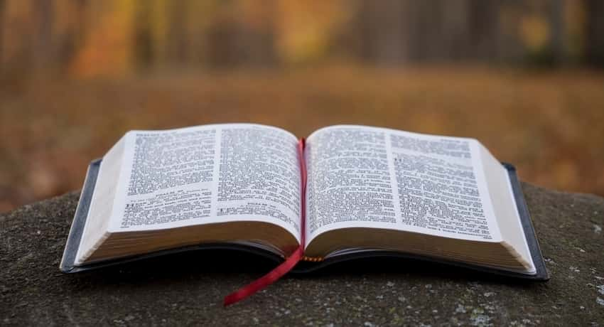 Read the Bible While Traveling