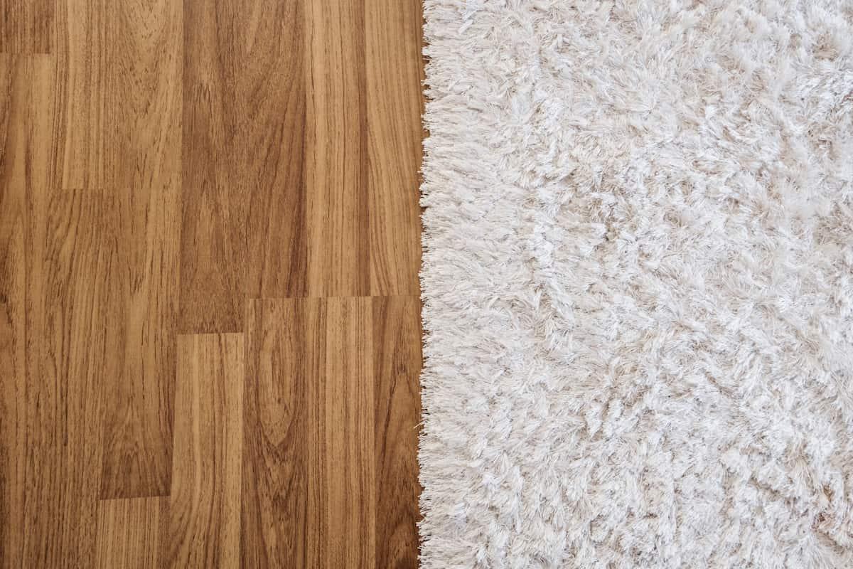 hardwood floors vs carpet