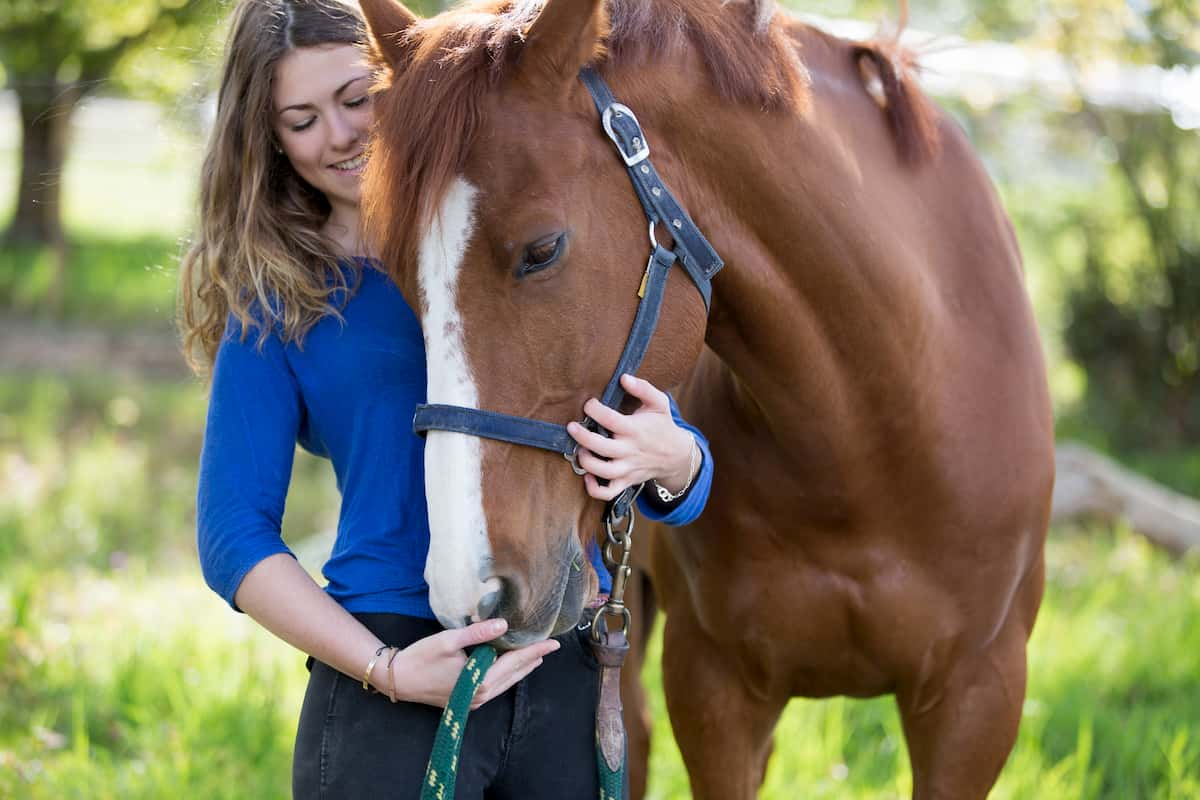 horse boarding facilities