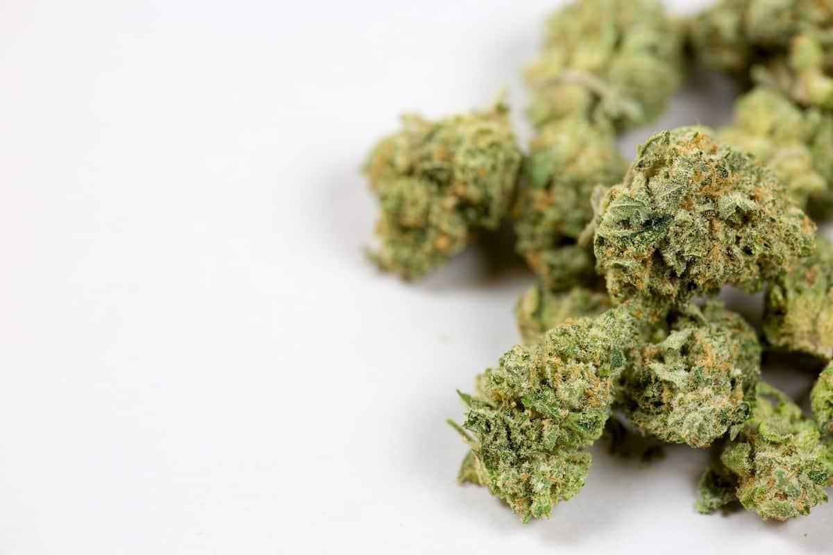 good weed vs bad weed