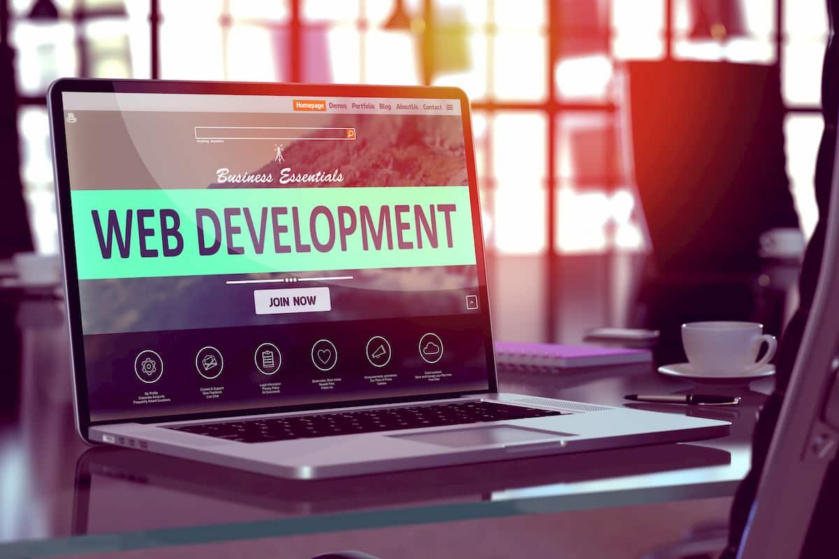 what do web developers do