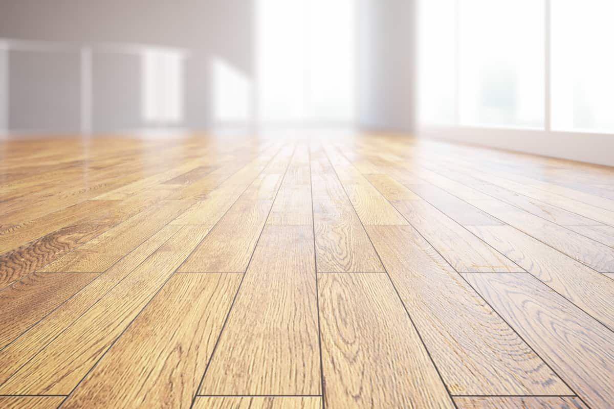 carpet vs hardwood floors