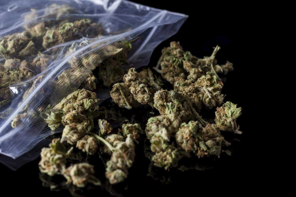 how to invest in the marijuana industry