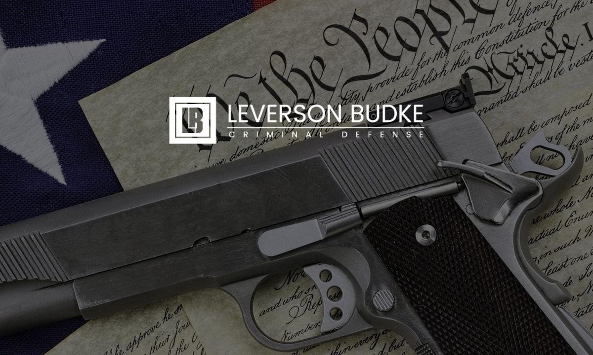 MN Supreme Court Gun Rights